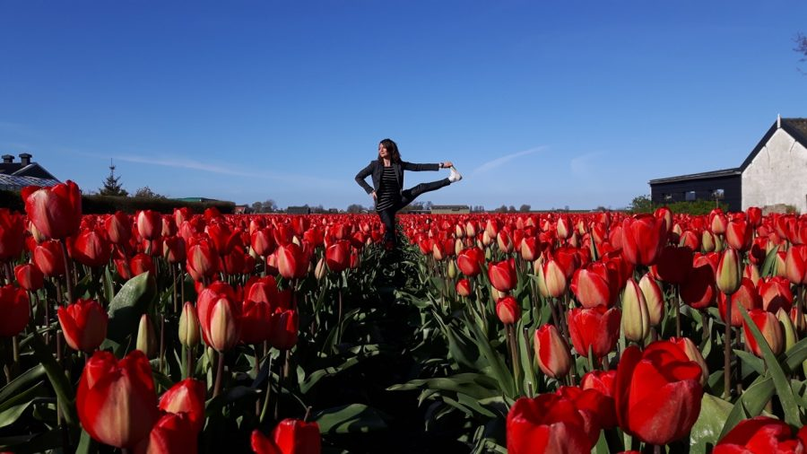 yoga in dutch tulips